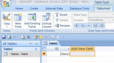 Working with Attachment data type in Microsoft Access